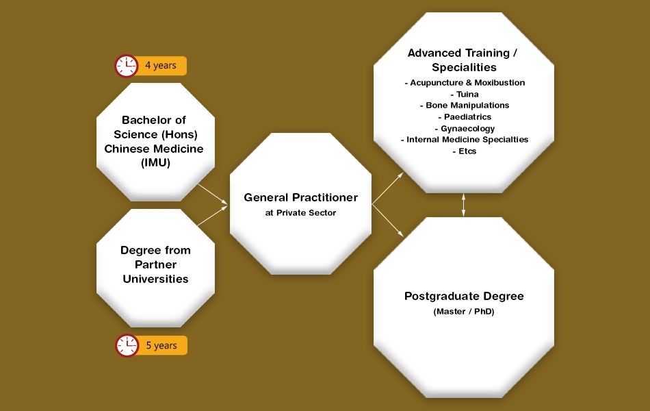 Career Pathways for Chinese Medicine Practitioner