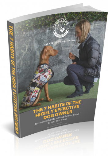 The 7 Habits of the Highly Effective Dog Owner Owen & Edwin