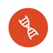 antioxidant icon dna