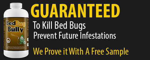Bed Bug Bully Official Site Here Direct