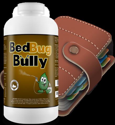 Bed Bug Cleaning Procedures
