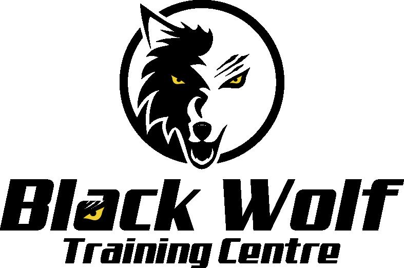 White Wolf Publishing  World of Darkness
