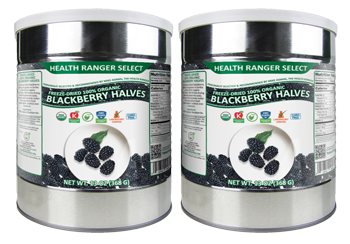 Freeze-Dried 100% Organic Blackberry Halves