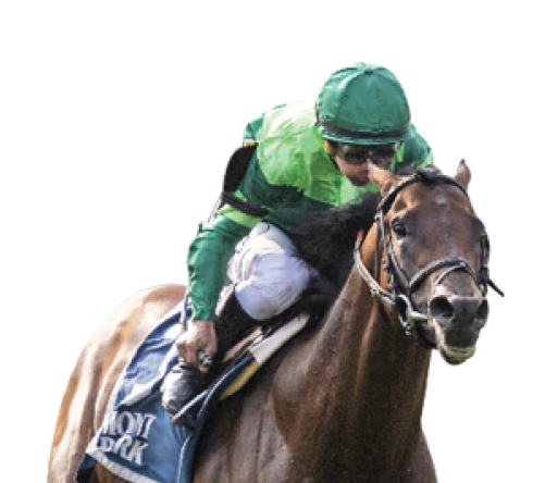 $100 Sign Up Bonus | DRF Bets | Daily Racing Form