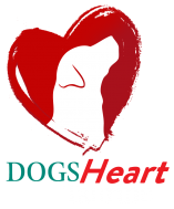 Addiction Pet Foods Dogs Heart Taurine
