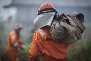 Greenpeace firefighters putting fire out in an Indonesian forest