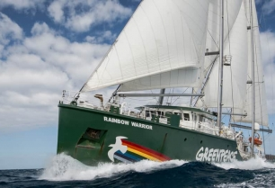 Rainbow warrior sailing during a campaign