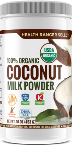 coconut milk powder 16oz