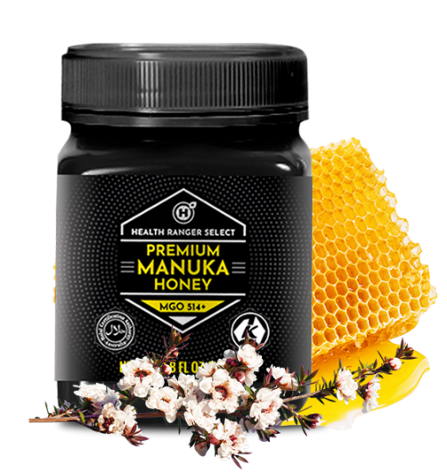 manuka honey with manuka flower