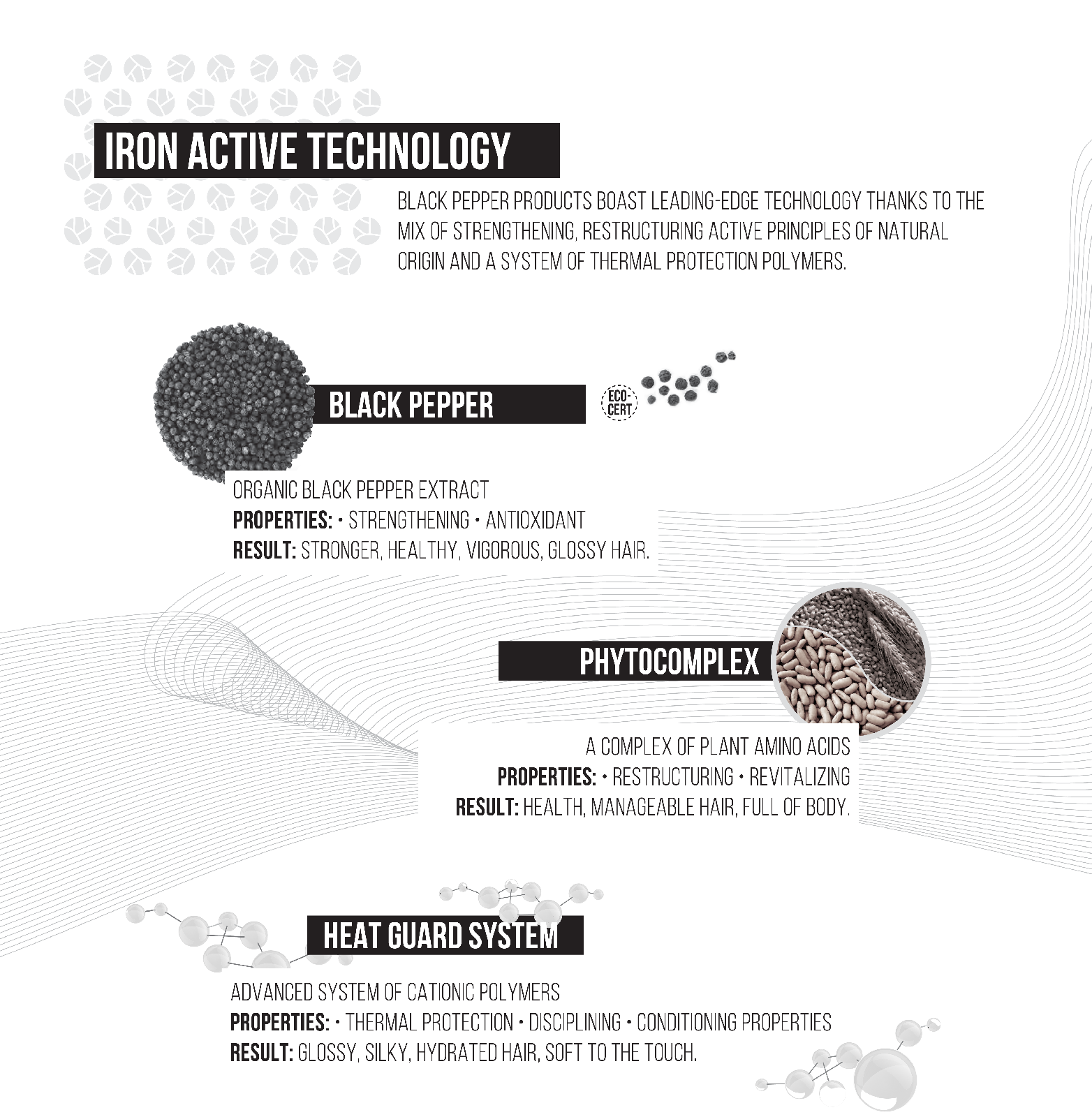 Inebrya Black Pepper Iron Active Technology