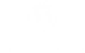 wordpress-logo-cursos