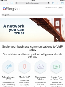 business voip network