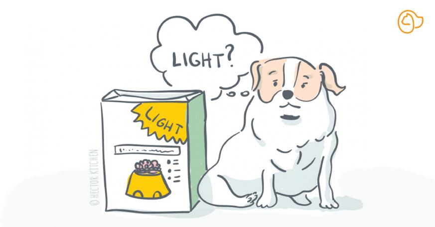 Croquette Chien Light Ou Allégée Le Guide Complet
