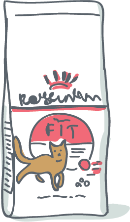 Croquette Chat Royal Canin