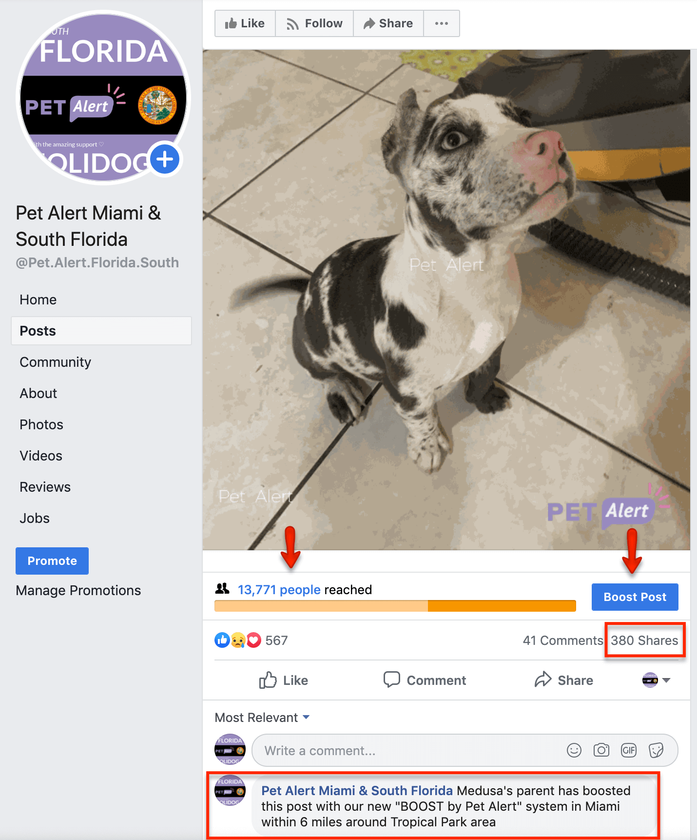 Boost by Pet Alert USA