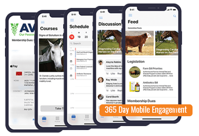365-Day Mobile Engagement