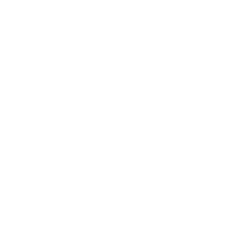 china free icon white
