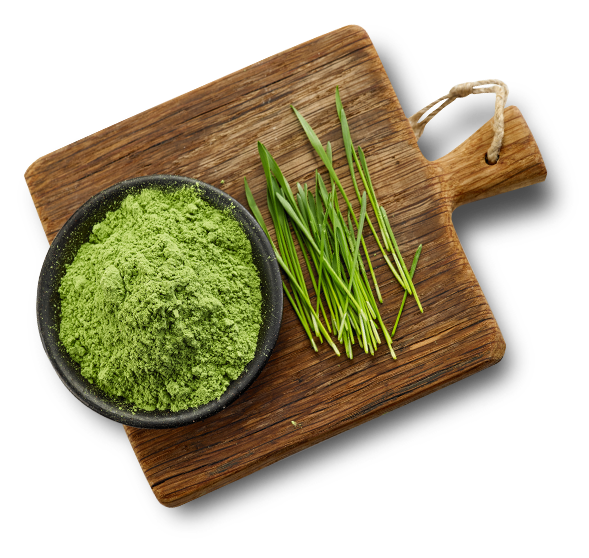 wheat grass + powder