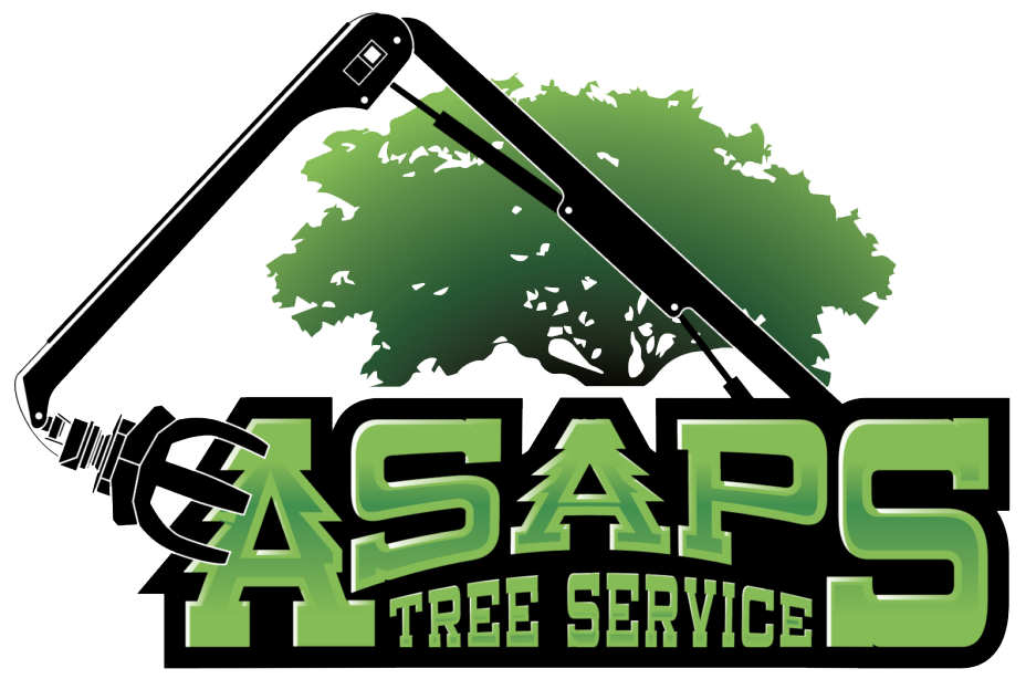 Indianapolis Tree Service