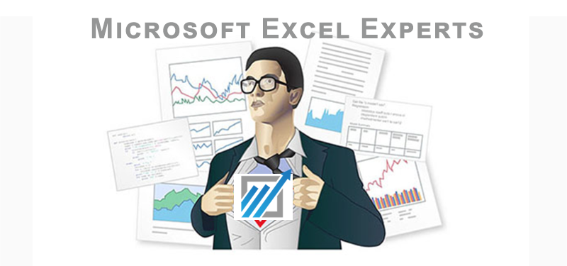 The Microsoft Excel Dashboard Experts