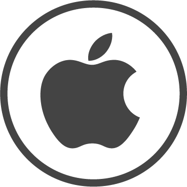 Apple Icon Grau