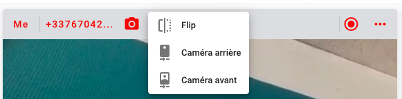 Switch cameras during a ViiBE call
